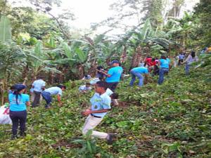 Realizan Jornada de Arborización en Villa Trina
